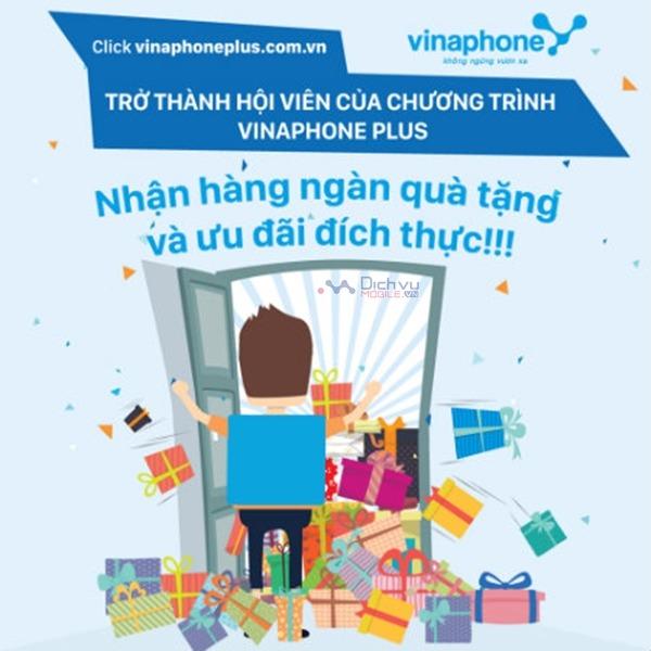 dang-ky-tham-gia-hoi-vien-vinaphone-plus
