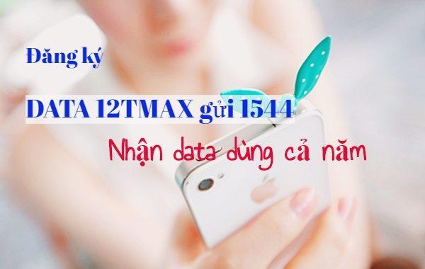 Đăng ký 12TMAX Vinaphone vào mạng cả năm không lo ngắt quãng