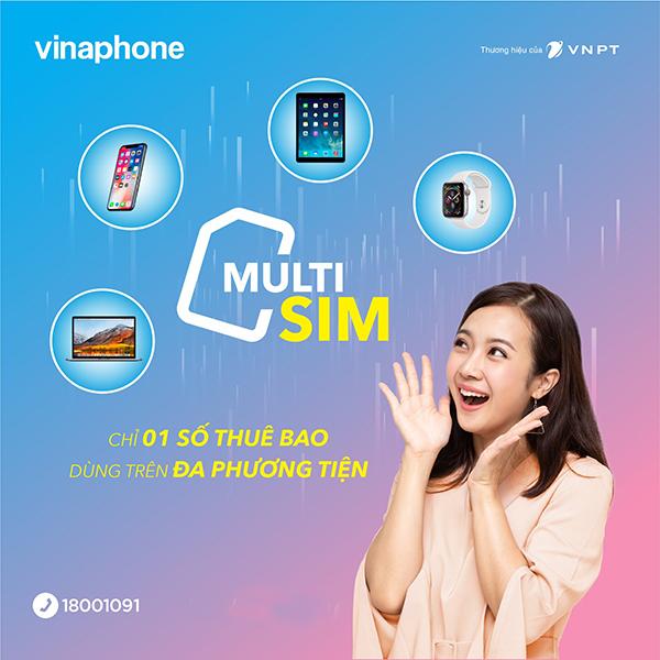 multisim-vinaphone-la-gi